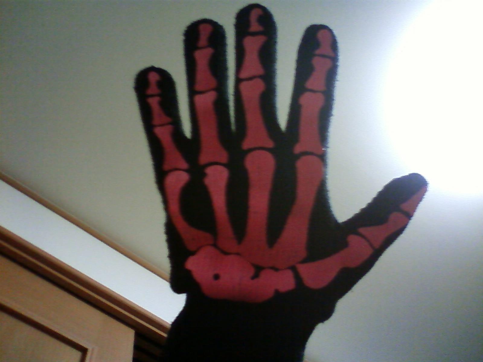 今年の手袋